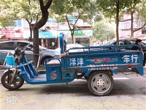 旧三轮电瓶车现低价出售,600元骑回家。地址在美高梅网站市莲花路冯记小灶酒门店