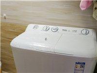 九层新海尔小神童半自动洗衣机出售