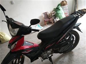 本人有一辆摩托车转让,证照齐全,有发票,保险到明年四月份,行驶七千公里左右,八成新,价格在1800元...