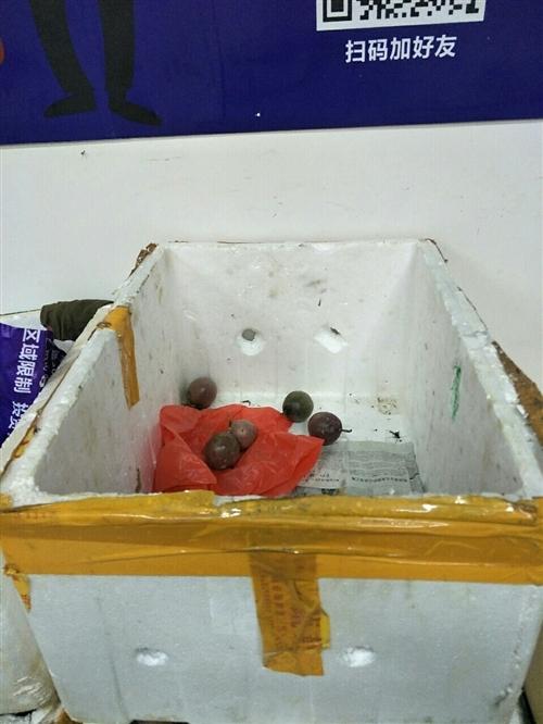 大量收购泡沫箱,2到3.5元每个。15083572920