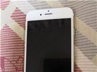 iPhone6     64G  成色好  自用手機一部出售。