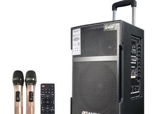山水sg3  12寸音响出售,买来两个月不到,闲置,低价处理,原价3050
