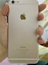 苹果6p1,16个金色8成新