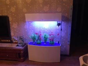 自家鱼缸闲置低价转让 自家鱼缸闲置在家,低价转让给有需要的人,长1米,宽35厘米,高1.4米,上循环...