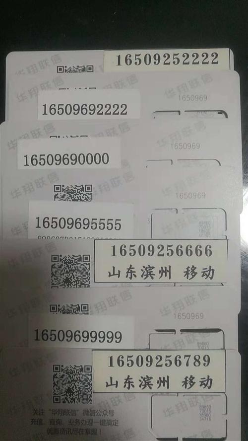 滨州大号  165-0969-5555价格17000  165-0969-2222价...