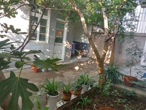独栋别墅,上下两层带院配房151平方,双气齐全,证过五,拎包入住,环境优美,东邻崇文学校很近,南邻人...