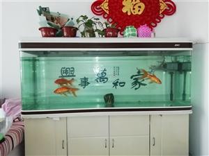 因家里装修,现忍痛转让正在使用中的1.5米正品生态鱼缸,买鱼缸赠送全套设备和鱼粮,有意者请联系我。