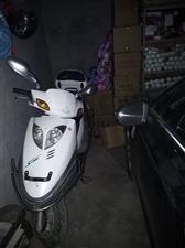 出售豪爵125踏板摩托车