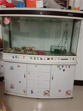 鱼缸,好看的鱼缸,又新又便宜的鱼缸,因为家里空间有限,将购置一年的鱼缸出售,高一米六,长大概一米三左...