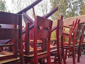 处理饭店椅子一批,有意者联系!