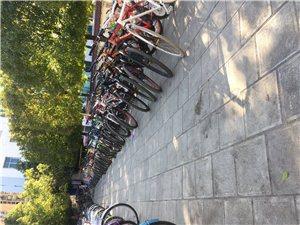 长期出售二手自行车  全新各品牌自行车女士车。死飞自行车。女士自行车。儿童自行车。出售新溜冰鞋和二手...