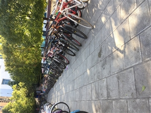 �L期出售二手自行�  全新各品牌自行�女士�。死�w自行�。女士自行�。�和�自行�。出售新溜冰鞋和二手...
