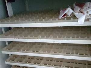 出售:孵化箱,鸡笼 地址:涞水112线西行5公里南秋兰村 电话:15631281486
