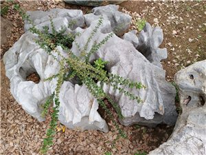 几吨重的安徵灵壁石,此石是99年买的,现在这样的石头在灵壁县要卖60多万,也不让运输,我现低价8万转...
