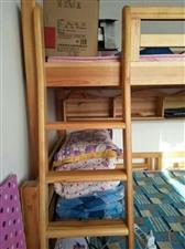 本人有高低床和一米二单人床九成新,现低价出售!