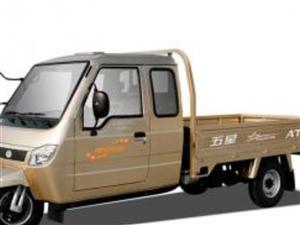 金沙国际网上娱乐官网随时看车,跑了3000公里,车况极品!