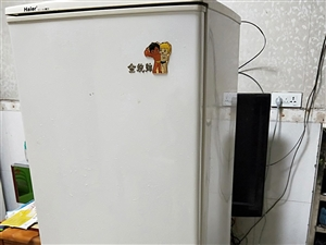 出售海尔冰箱一个,165升双开门冰箱,无暗病,完全正常,制冷效果好,需要的联系。