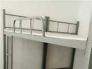 出售铁床 高低床 学生床,用一年,八成新,带棕垫,150元。联系电话:185 5348 3812