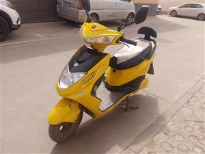 家用王派电动车一辆,6ov20A电池,手续齐全,常骑的车,谁需要到泰和家苑来骑。