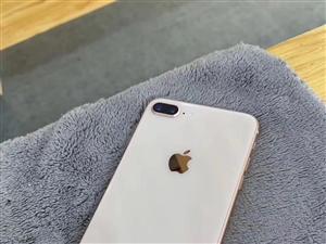 苹果8p-64G完美价格
