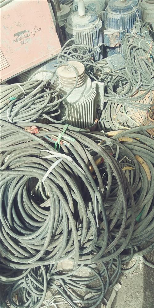 常年回收电缆,电机