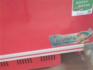 九成新冷冻柜,无故障,现低价出售