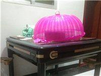 宣和麻將桌,八成新,閑置,低價處理!