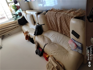 家有三組皮沙發低價出售,分別是兩個雙人各1.5米,一個單人1.2米,因搬家無法帶走,有需要的聯系我!...