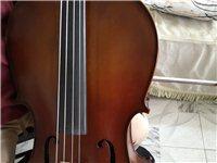 四分三大提琴没用过,孩子小,买大了,有意请手机信息留言qq357159658