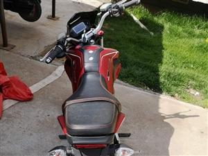 电动车,9.8成新,5000买的骑了不到10次,现低价出售。