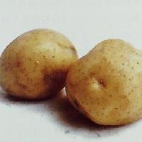 我要买土豆,1000斤左右,有谁要卖的联系我,用来炸土豆的,新鲜的最好,价格合适
