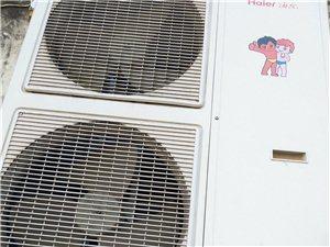 转让海尔5匹中央空调。非诚勿扰