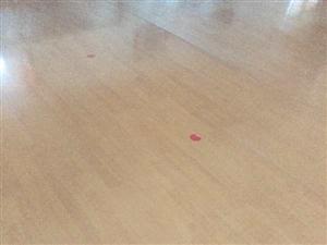 低价出售地板,两种颜色,价格面议。电话13561283010