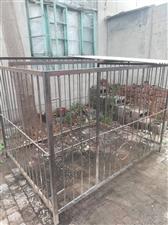 出售闲置狗笼子一个,长1.8米,宽1.5米,高1.5米,大,中型犬都可以养