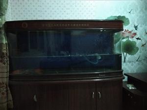 出售1.5米鱼缸,8成新1000
