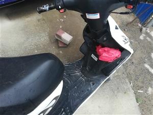 踏板摩托车有意者可以和我联系,价格面议