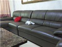 双虎家私真皮沙发低价出售