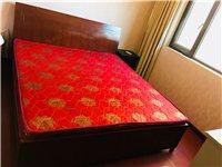 床 床墊 床頭柜 上門取貨 金色家園6-1901