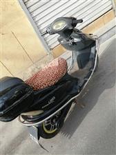 立马踏板电动车卖,看好车价格好说