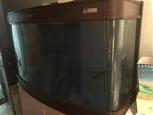 生态鱼缸,可联系看实物