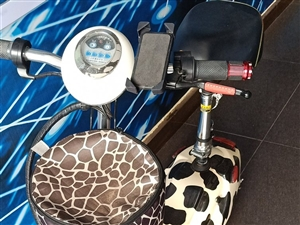 小型电瓶车,代步工具,9成新。