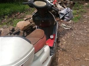 木蘭踏板摩托車