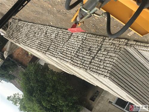出售葡萄大棚水泥桩 本人有葡萄水泥桩16000棵便宜出售,规格2.4米-2.6米,7x7,有需要着...