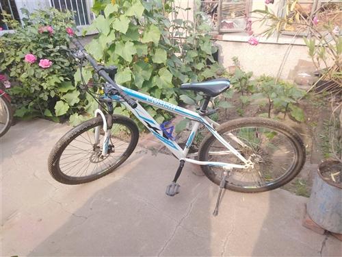 出售兩輛自行車山地車150元另一臺80元