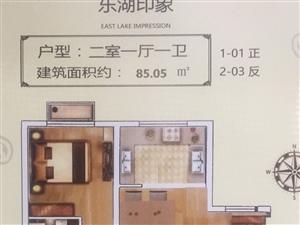 东湖印象毛坯现房2居首付20万