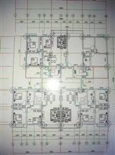 五中小区3室 2厅 1卫面议