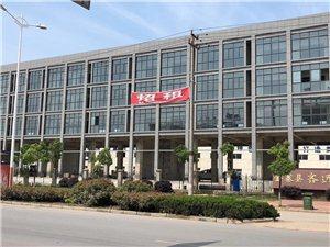 金寨縣開發區電子商務中心對外招租