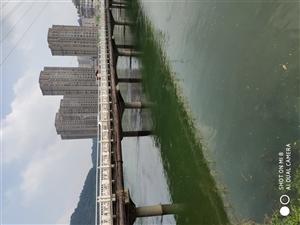 金江新城3室 1厅 1卫