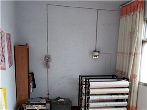 棉织小区3室 1厅 1卫40万元