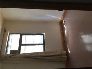 三角镇2室 1厅 1卫面议